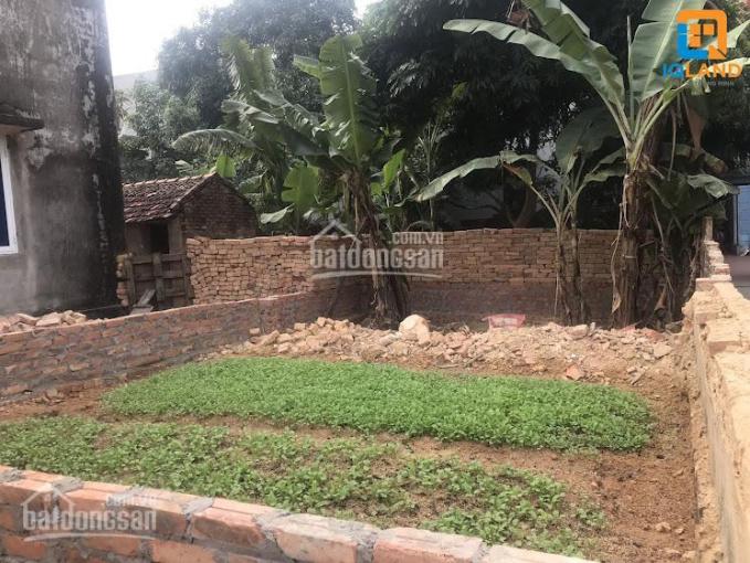 Bán đất sát KCN Nội Bài, ô tô đỗ, 40m2, MT 4m, giá công nhân định cư chỉ 430tr ảnh 0
