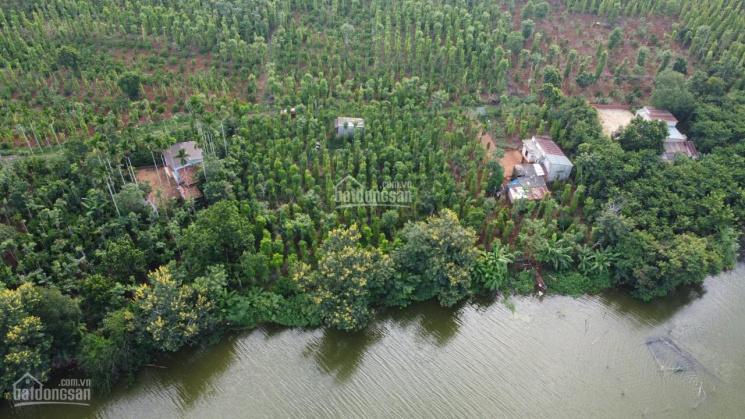 1600m2 (thực tế 2200m2) 45m mặt hồ 400m2 thổ cư siêu đẹp hồ Việt Đức 4 ảnh 0