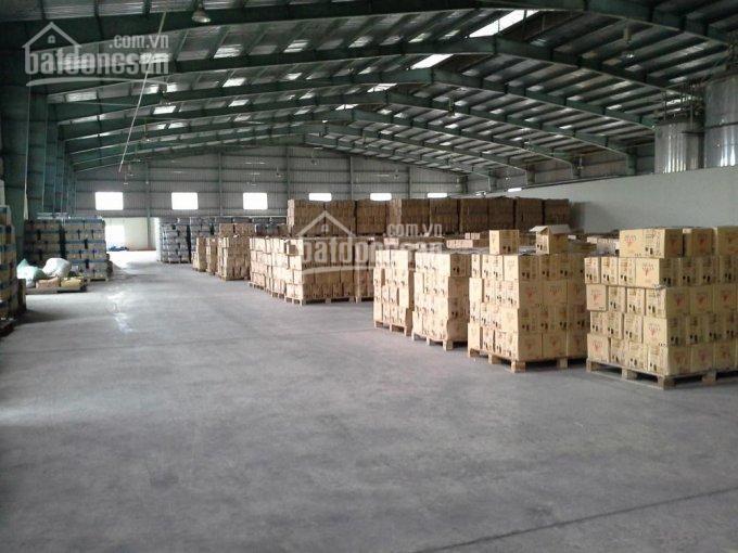 Cho thuê kho xưởng 1200m2 trần cao nền bê tông mặt tiền đường Lê Văn Quới ảnh 0