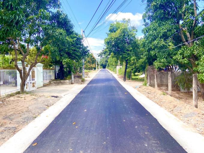 Bán đất 2 mặt tiền đường nhựa Đồng Bà Thìn - Suối Cát vuông vức đẹp như mơ, LH: 0909850538 ảnh 0