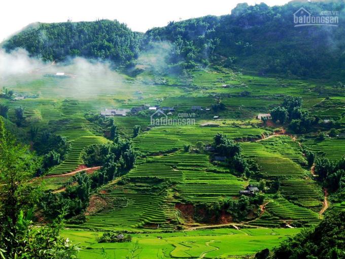Mảnh đất Mộc Châu view đẹp khai thác du lịch tiềm năng ảnh 0
