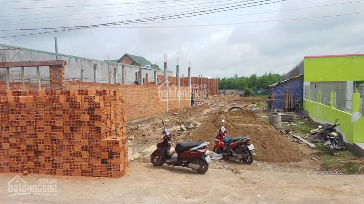 Gia đình cần tiền bán gấp lô đất 200m2 đường Đoàn Nguyễn Tuấn, Hưng Long ảnh 0
