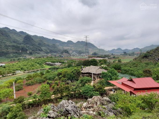 Đón sóng quy hoạch khu du lịch Mộc Châu - bán lô 3000m Mường Sang - liên hệ 0915616199 ảnh 0