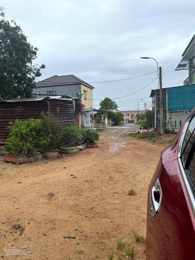 Đất kiệt Hàn Mặc Tử TP Đông Hà, tỉnh Quảng Trị ảnh 0