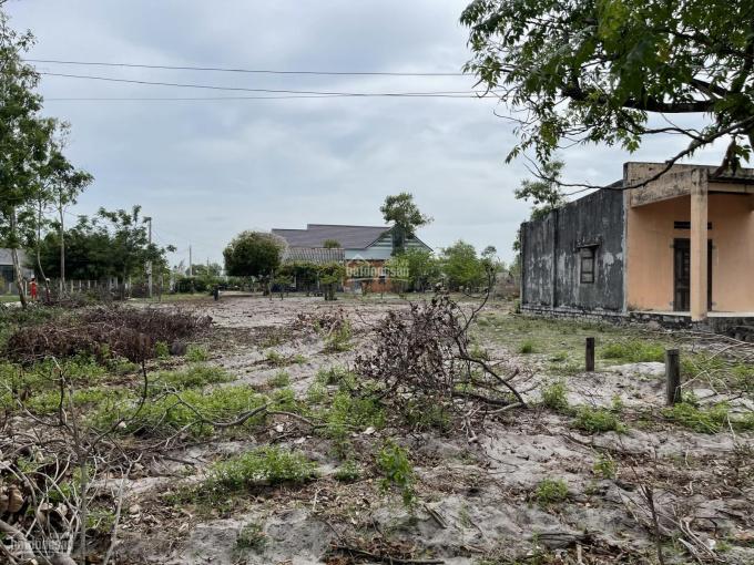 Bán đất đường quy hoạch 20m - Tân Phước - TX La Gi, thổ cư 200m2 giá gốc ảnh 0