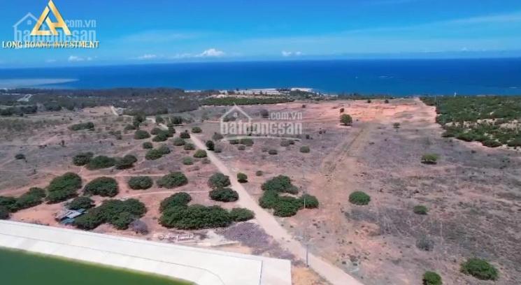 Cần ra đi lô đất gần biển có shr, đất cln giá cực rẻ mùa dịch 680triệu/5200m2, LH 0788969474 ảnh 0