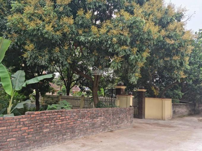 Cần bán đất thổ cư thôn Khuê Bích, xã Thượng Quận, Kinh Môn, Hải Dương giá 1.1 tỷ ảnh 0