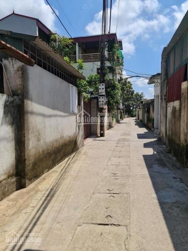 Vĩnh Quỳnh 35m2 đất lô góc, ngõ thông ô tô chạy, gần chợ, trường học giá nhỉnh 1tỷ ảnh 0