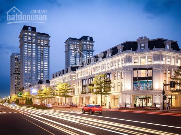 Thế giới bất động sản bán liền kề biệt thự shophouse Louis City Hoàng Mai vị trí đẹp, LH 0933402446 ảnh 0