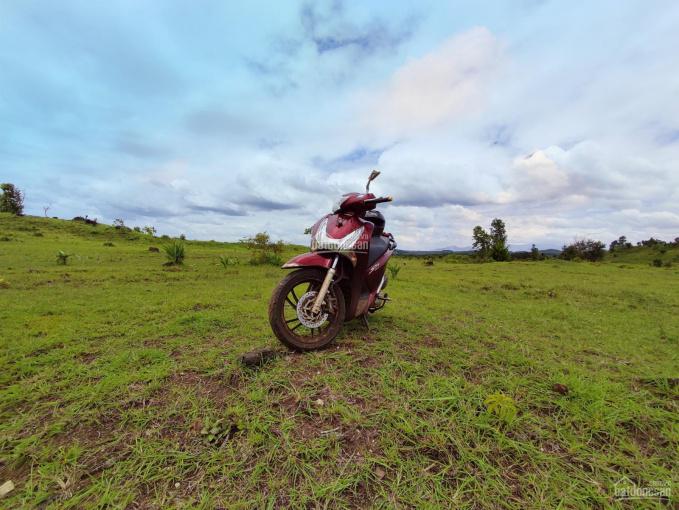 50 ha đất quy hoạch trang trại, đáp ưng tương đối đầy đủ các tiêu chí làm dự án ảnh 0