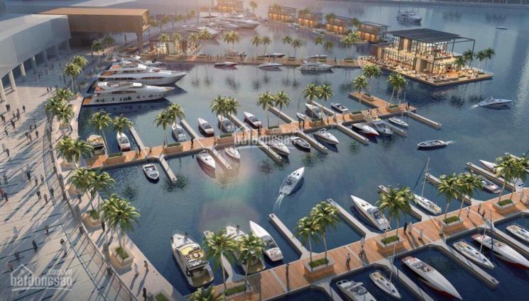 Bán khách sạn 4 sao sở hữu 32 phòng nghỉ, 6 tầng nổi + 1 tầng hầm ~ 1300m2 tại trung tâm Bãi Cháy ảnh 0