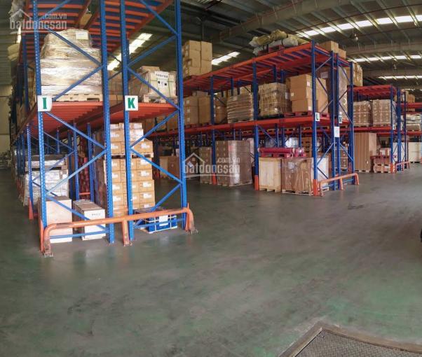Cty Hoa Phượng cho thuê Kho, xưởng CCN huyện Hóc Môn, có kho full dịch vụ quản lý(300m2 - 10.000m2) ảnh 0