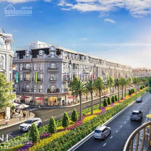 Bán đất nền liền kề - Biệt thự - shophouse dự án Bắc Đầm Vạc giá từ 32 triệu/m2 ảnh 0