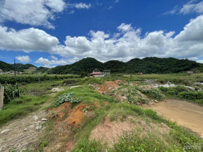 Bán lô đất 5000m2 thị trấn Nông Trường Mộc Châu, suối chảy quanh ảnh 0