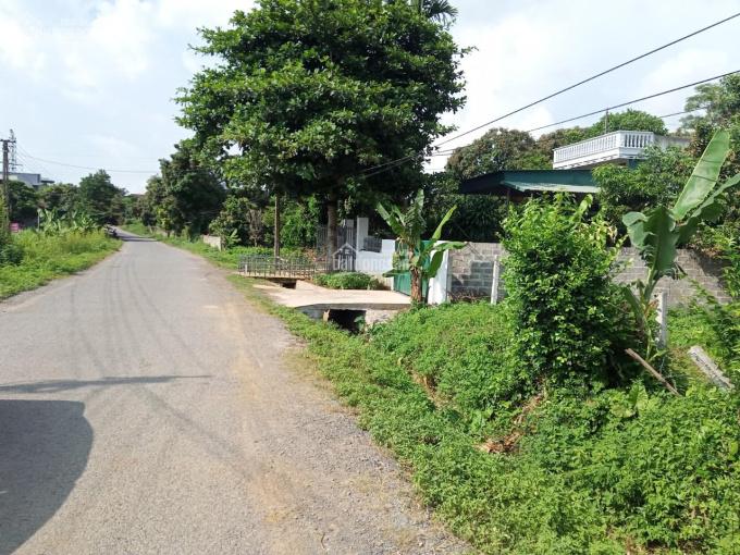 Cần bán 351m2 đất 10m mặt tiền bám đường liên xã, khu đông dân cư tại Tân Lạc ảnh 0
