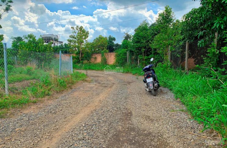 Cần bán đất vườn 1000m2 cách mặt tiền đường nhựa 700m tại Phú Ngọc, Định Quán ảnh 0