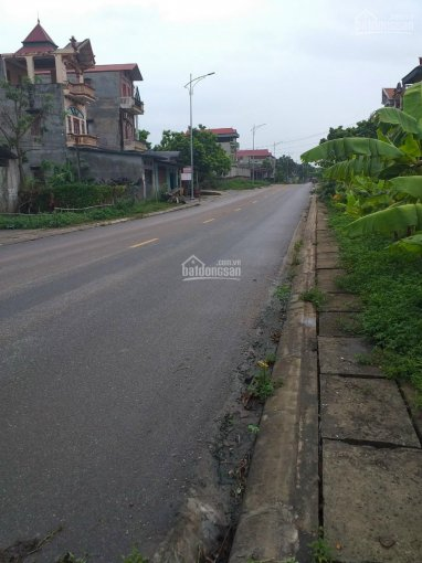 Bán nhà đất Tân Yên Bắc Giang mặt đường Tỉnh Lộ 295 hợp 322m2, giá 2 tỷ xx ảnh 0