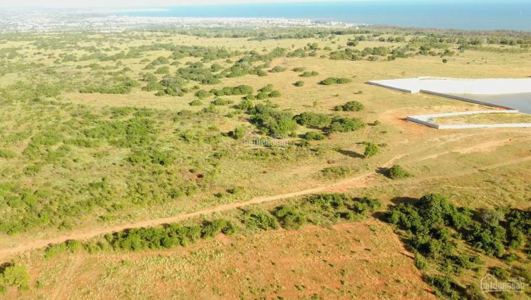 Tôi chính chủ cần bán gấp lô đất gần biển, sat KDC, đối diện quy hoạch FLC, TMS Group LH 0932888176 ảnh 0