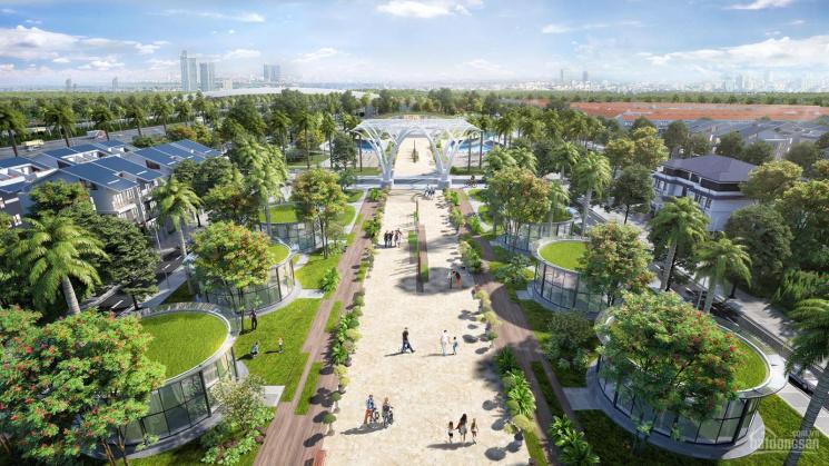 Bán biệt thự Sol Lake KĐT Dương Nội - Hà Đông diện tích 200m2 - 300m2 giá 50 triệu/m2 đất ảnh 0