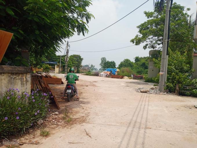 Chính chủ cần thanh khoản gấp đất Phú Lương, HĐ, Dt: 310m2, lô góc, MT 20m. Giá 31,7tr/m2 ảnh 0