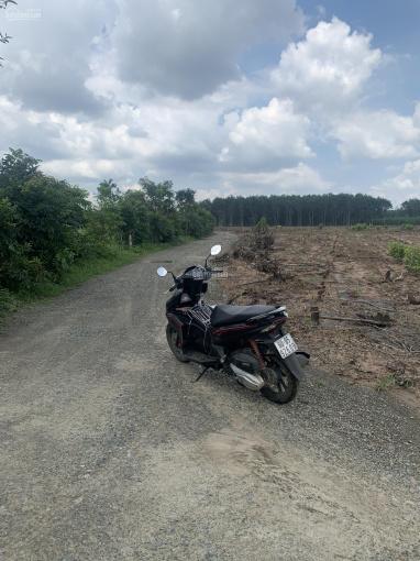 Đất phân lô Xuân Tâm giành cho nhà đầu tư 1,1 mẫu với 253m mặt tiền đường ảnh 0