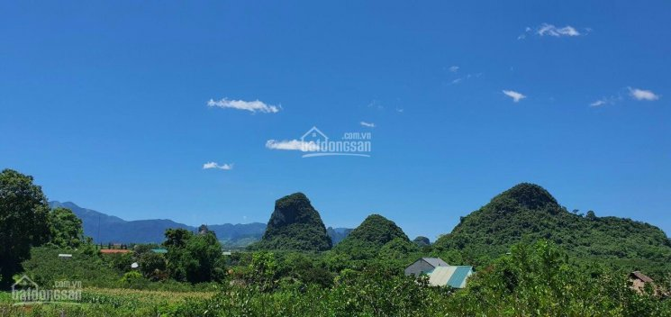 Bán siêu phẩm bám hồ DT 4200m2 làm nghỉ dưỡng tuyệt đẹp tại Cao Phong, Hòa Bình ảnh 0