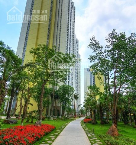 Một số căn hộ chuyển nhượng giá tốt tại Ecopark, Rừng Cọ, 1PN, 2PN, 3PN. Liên hệ Mr Đạt 0397803686 ảnh 0