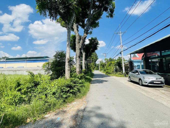 Đất 2MT xã Phước Vĩnh An, Củ Chi ảnh 0
