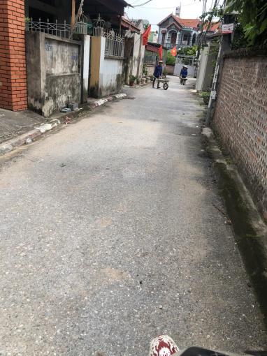 Chính chủ cần bán gấp mảnh đất 40m2 tại xóm 5, Đông Dư, Gia Lâm, Hà Nội ảnh 0