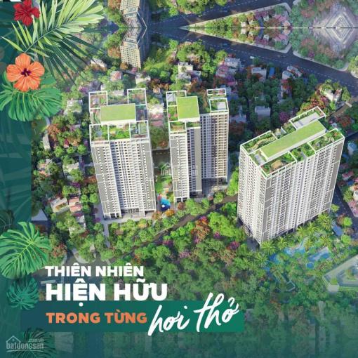 Feliz Homes TT Q. Hoàng Mai mở bán căn hộ cao cấp, chính sách ưu đãi cho khách hàng ảnh 0