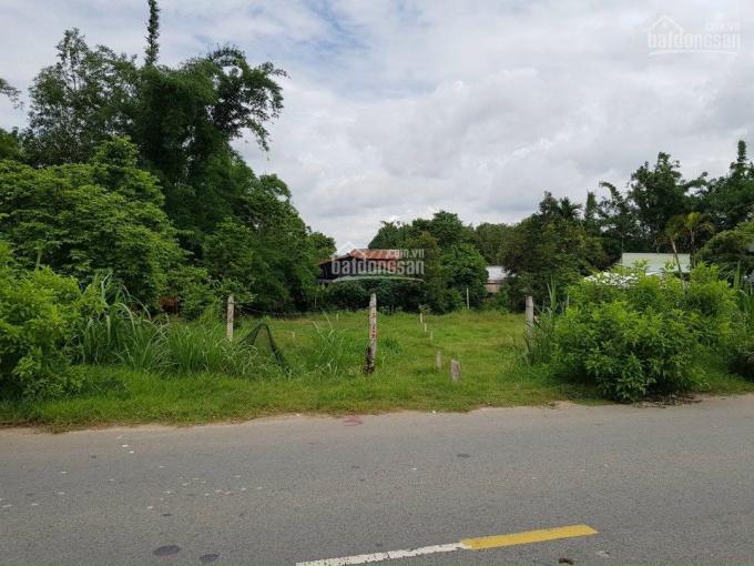 Đất Củ Chi, xã Phú Mỹ Hưng, cần bán gấp ảnh 0