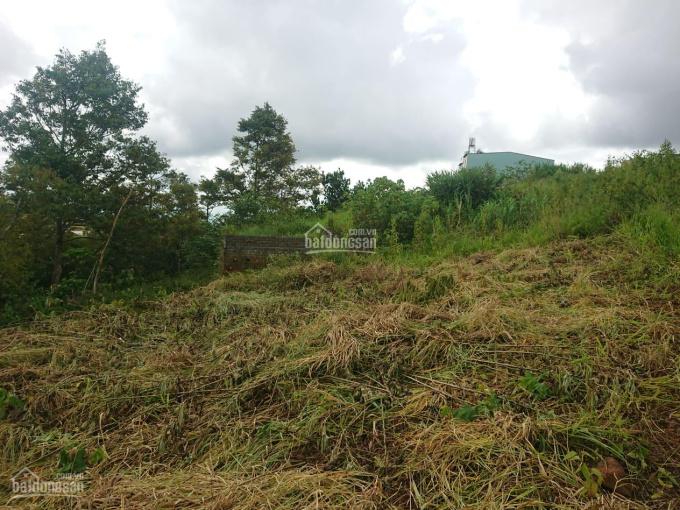 Bán đất chính chủ hẻm Phan Đình Phùng giá 680tr diện tích 110m2=5x22m ảnh 0
