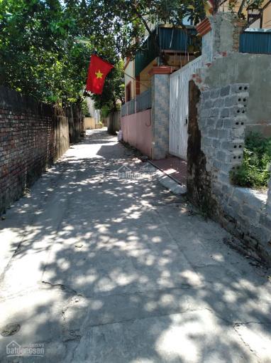 Bán đất 40m2 Thọ Am, đẹp, MT 4m, Thanh Trì, 1.2 tỷ ảnh 0