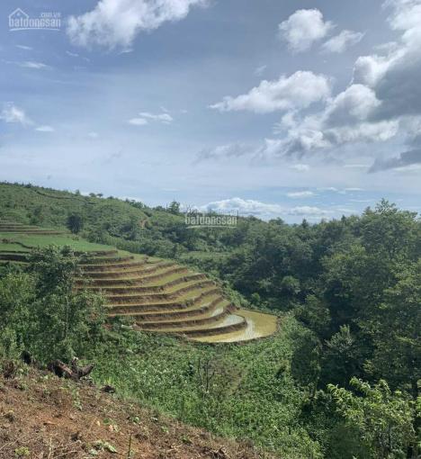 Bán đất xã Y Tý, Huyện Bát Xát Lô 3300m2 mặt đường rộng QH 25m đi qua ảnh 0
