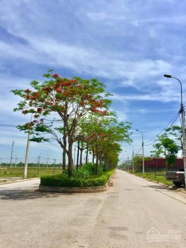 Chính chủ cần bán gấp lô đất khu đô thị Sao Mai Triệu Sơn ảnh 0