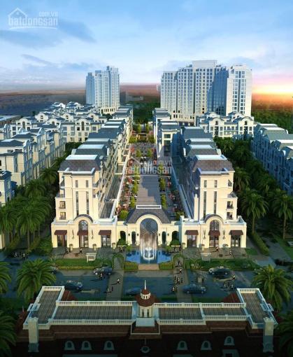 Bán sky villa Zone 6 Swan Bay, chấp nhận lỗ 200 triệu view trực diện sông, LH: 0904 555 872 ảnh 0