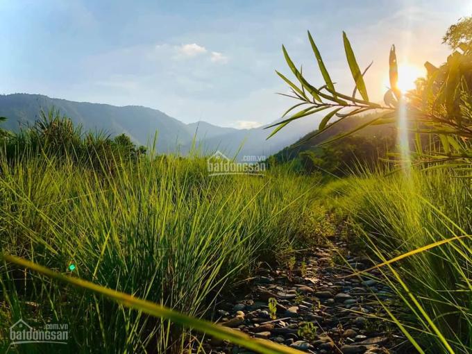 Đầu tư tiềm năng với lô đất 2000m2 có 400m2 mặt tiền xã Hòa Phú Quốc Lộ 14G ảnh 0