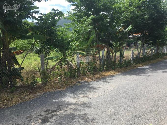 CC bán lô đất rộng giá rẻ huyện Tịnh Biên An Giang 1400m2 gần khu du lịch cáp treo Núi Cấm ảnh 0
