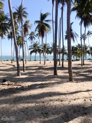 Bán đất sát biển - Phan Thiết, Bình Thuận. LH: Mr. Hùng 0936371676 ảnh 0