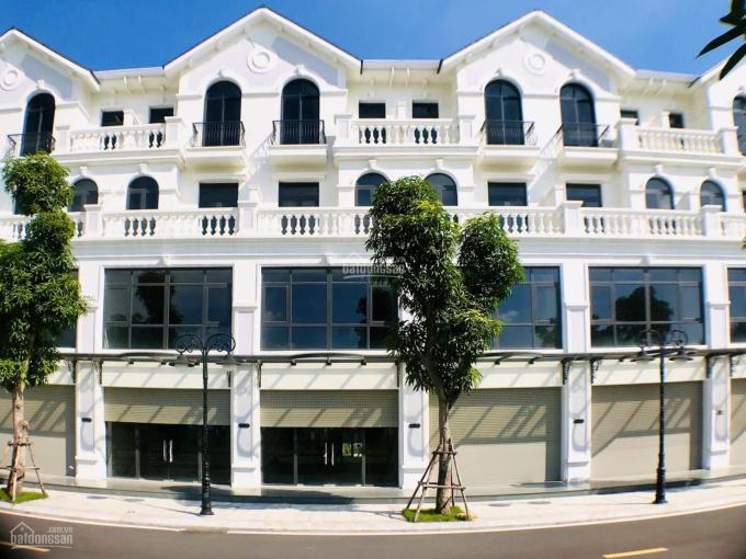 Bán biệt thự, shophouse Vincity Ocean Park Gia Lâm sổ đỏ vĩnh viễn giá từ 11tỷ, Liên hệ: 0911269444 ảnh 0