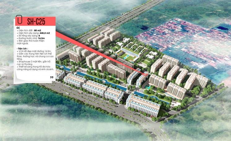 Shophouse Cát Tường KCN Yên Phong Bắc Ninh suất ngoại giao chỉ từ 5,x tỷ/lô 80m2 ảnh 0