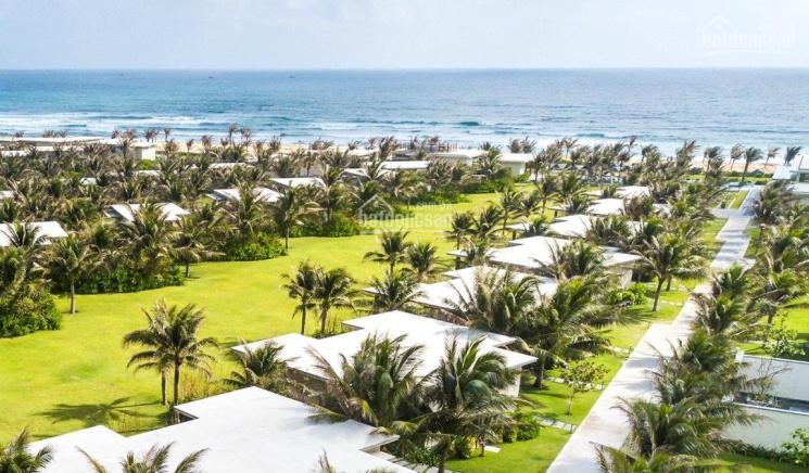 Bán gấp villa Biển Quy Nhơn 225m2 - 600m2, trả góp trong vòng 2 năm, TT 50% nhận nhà ảnh 0