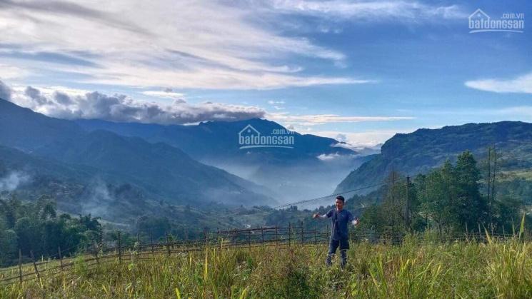 Bán đất mùa dịch 280m2 thôn Lao Chải, Y Tý, Lào Cai (Sapa 2) liên hệ 0915616199 ảnh 0