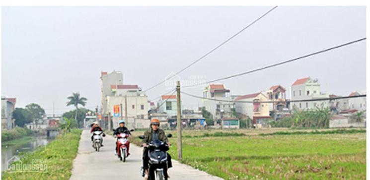 Bán đất thị trấn Liễu Đề, Nghĩa Hưng, Nam Định, ô tô vào tận nhà, giá cho nhà đầu tư. 175m2, MT 9m ảnh 0