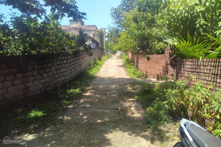 Bán đất tại Hòa Sơn, Lương Sơn, Hòa Bình giá đầu tư ảnh 0