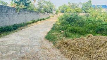 Chính chủ bán gấp đất 2 mặt đường, 850m2, Nhuận Trạch Lương Sơn, Hòa Bình 0947404410, hồ Đồng Chanh ảnh 0