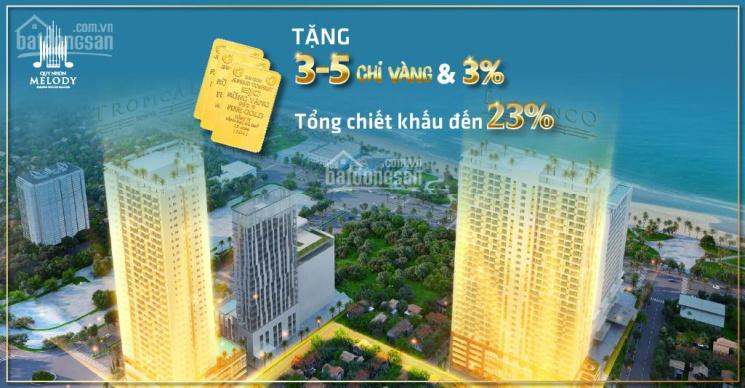 Căn hộ nghỉ dưỡng biển Quy Nhơn, chương trình chiết khấu 23% ảnh 0