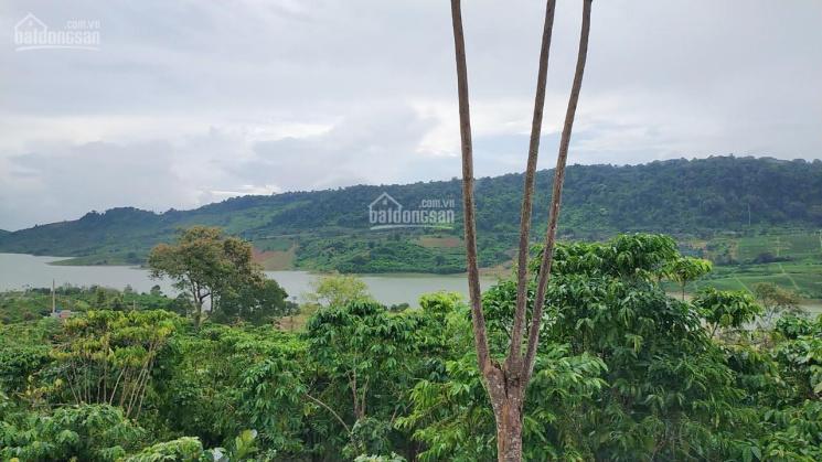 Đất view Hồ Ngọc hai mặt tiền, giá F0 gần dự án Amavi và hồ Ngọc Village ảnh 0