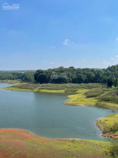 View hồ Đá Bàng 60m mặt nhựa 80m đường đất 5000m2 500m2 TC, giá 9,5 tỷ hướng nhìn ra bờ hồ ảnh 0