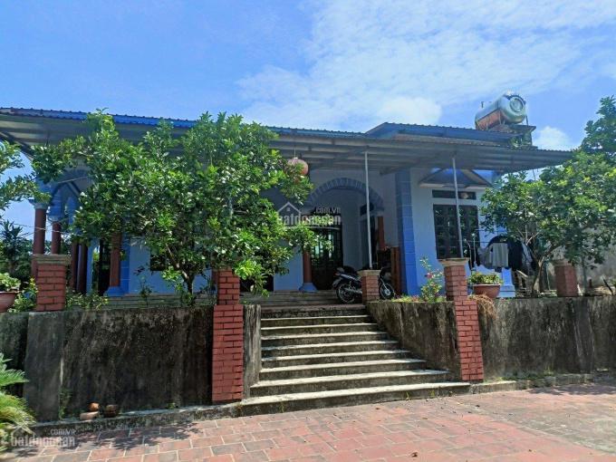 Chính chủ bán nhà và vườn, đồi trang trại cực đẹp, 27610m2, LH 0988979974 ảnh 0